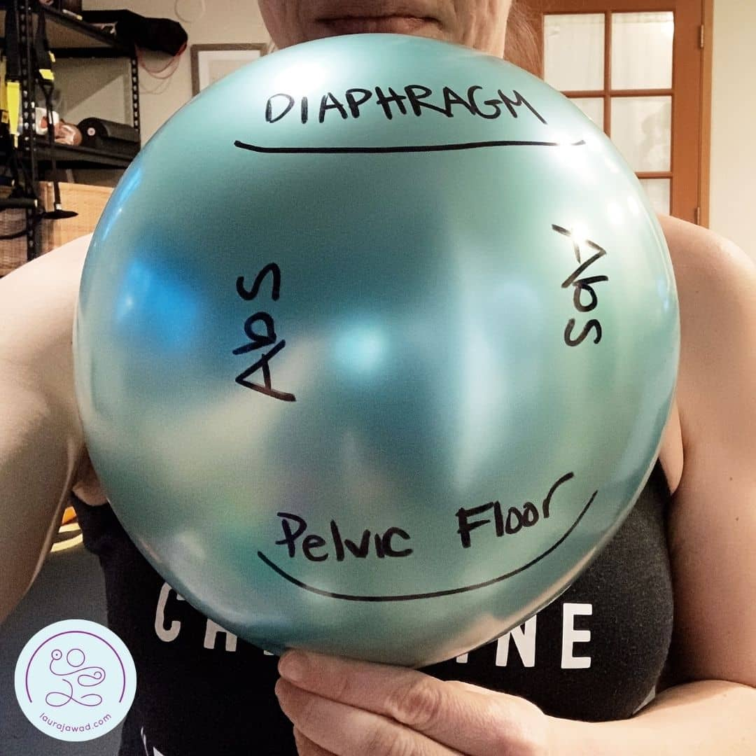 Picture of a ballon labelled with diaphragm, pelvic floor and abdominal muscles.